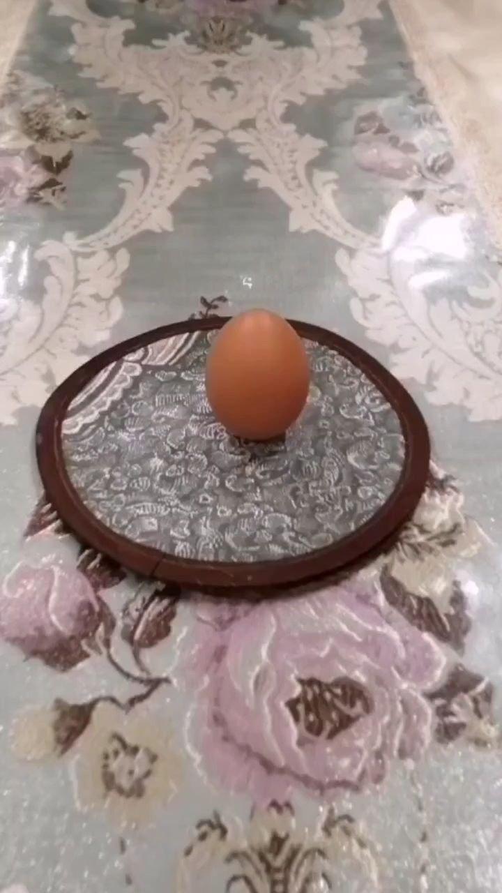 今日春分,据说这天鸡蛋能竖立起来。因为这天南北昼夜一样长,地轴跟地球繞太阳轨道面处于力的相对平衡,试试吧!我搞了多次,终于成功! #新人报道请多关照