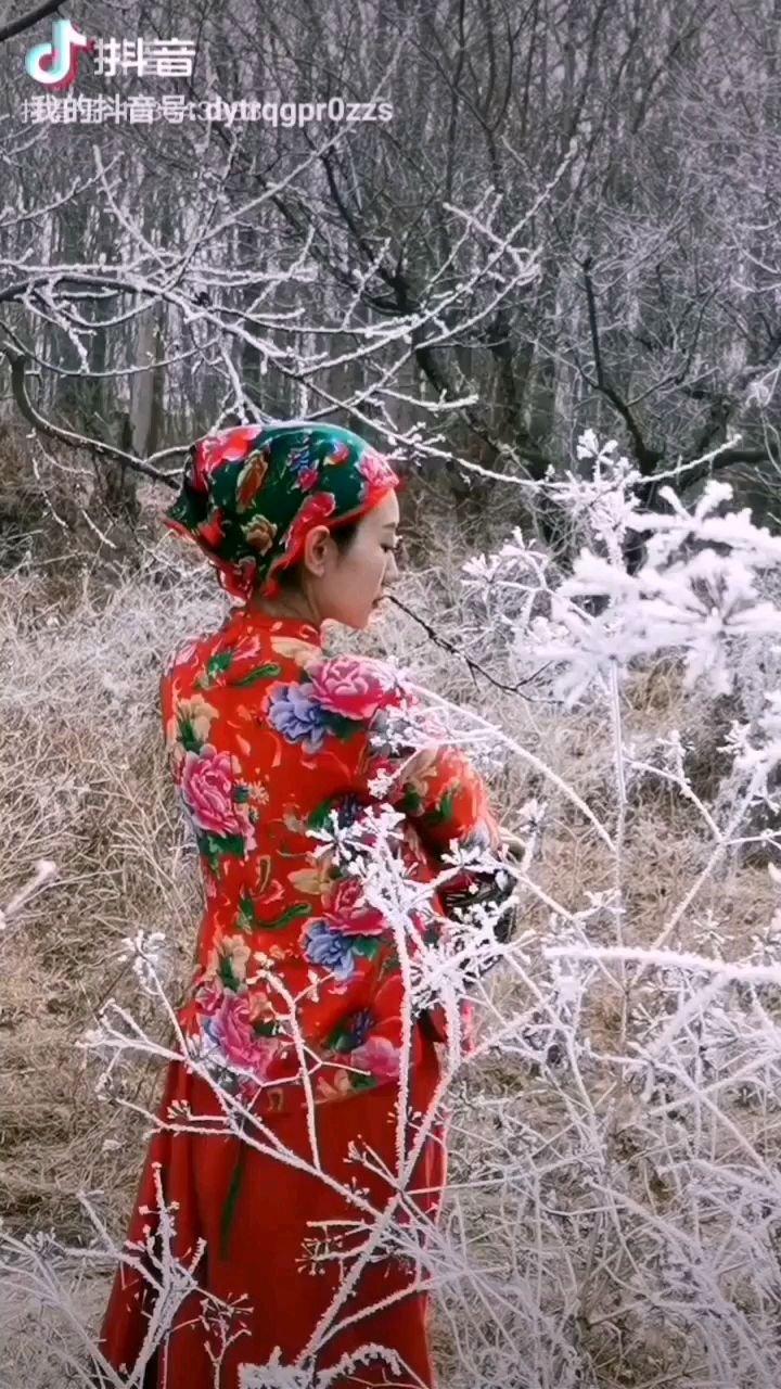 《雪中红梅》  在冰雪之中 你绽放得如此美丽 那如火的花瓣 是那样姣艳绚丽……