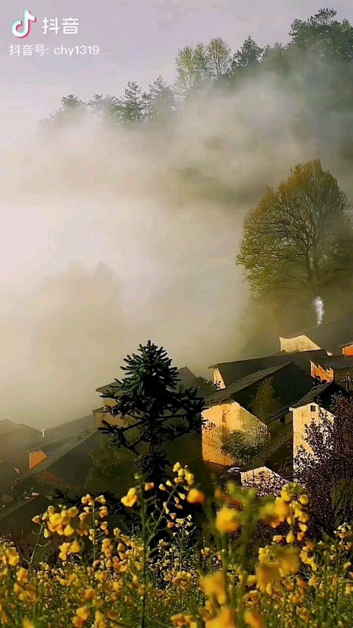 《晨》  一阵薄雾把沉睡的山村唤醒 袅袅的炊烟预示着新的一天开始 当阳光又洒满了大地 沸腾的山村又充满了活力……