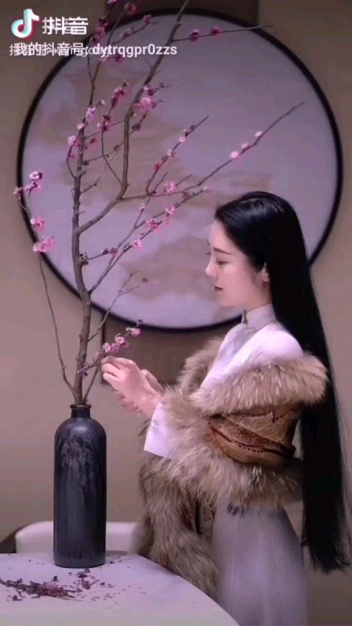 《桃花情》  折支桃花做插瓶 风雅妩媚煞动人 修剪身姿现丽影 窥见一片恋花情……