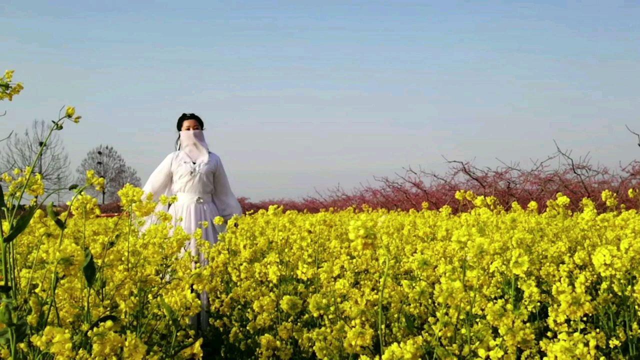 #最美古风 @花椒热点 从小看见花儿走不动,可能真的是花仙子下凡?#3月你好