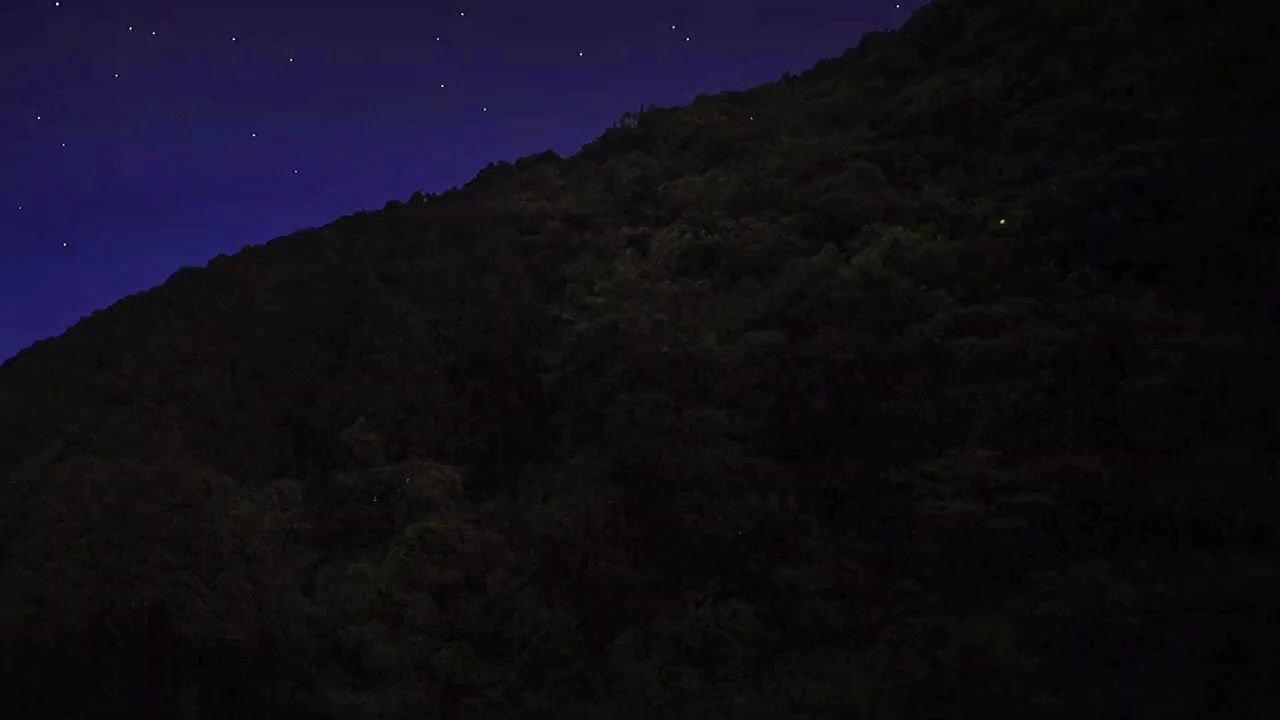星星睡不着的时候会不会数人类