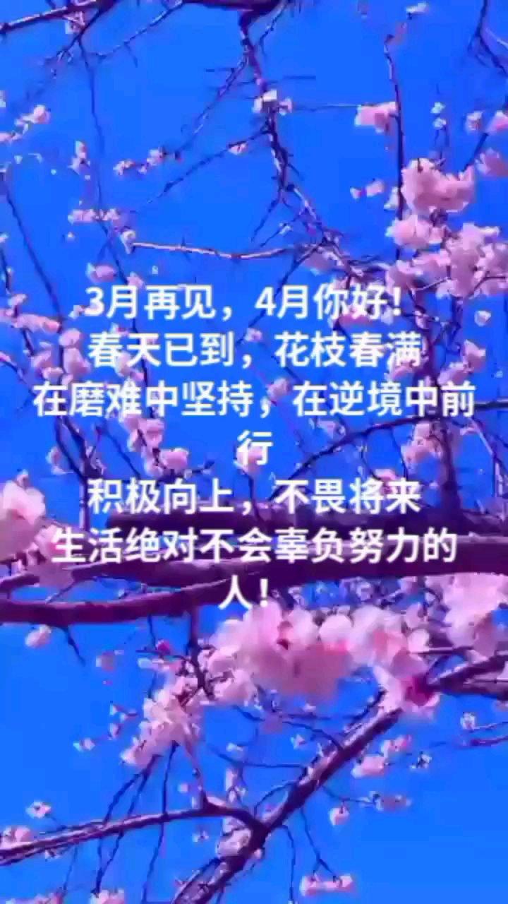 3月再见,4月你好! 春天已到,花枝春满 在磨难中坚持,在逆境中前行 积极向上,不畏将来 生活绝对不会辜负努力的人!
