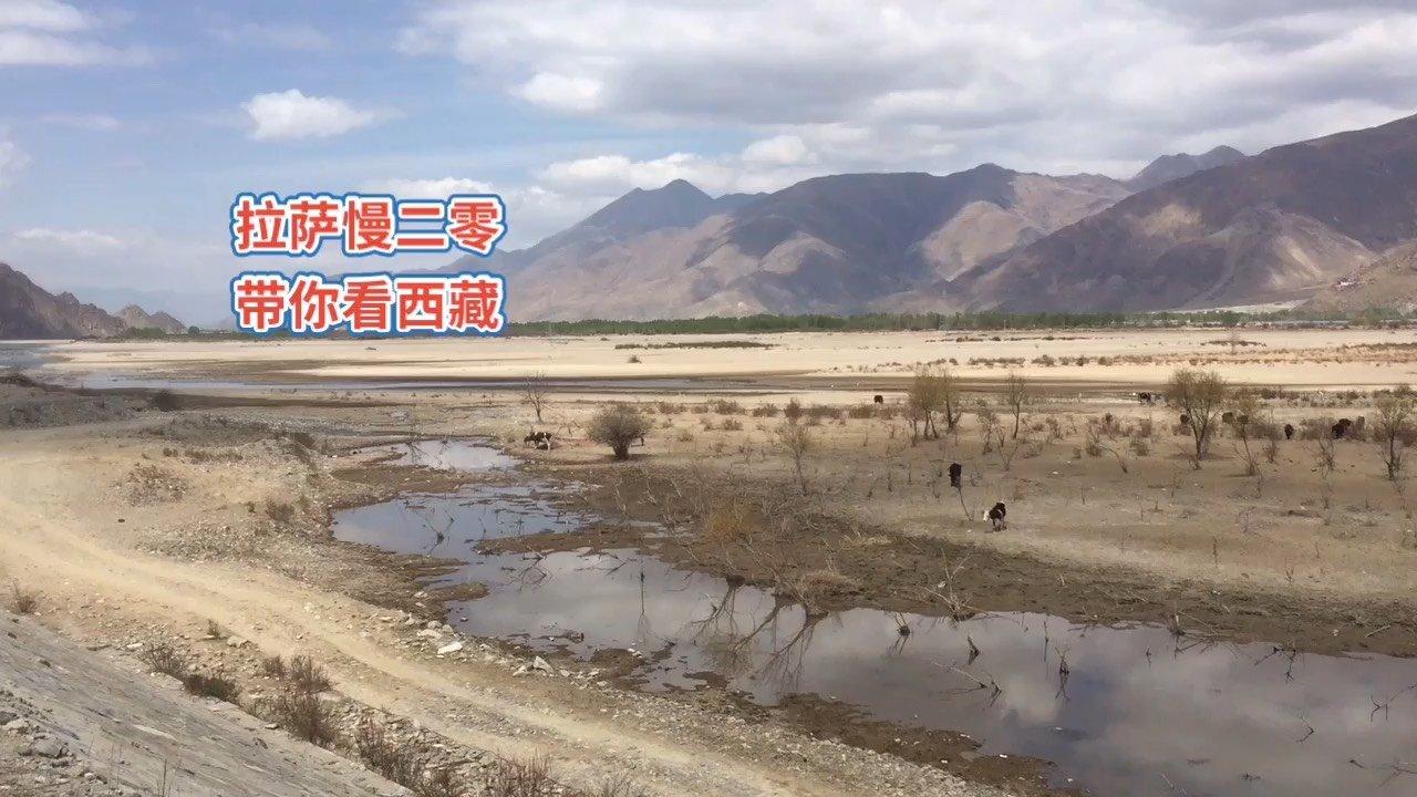 拉萨慢二零 带你看西藏! 五一米拉骑行剪辑三,拉萨河风光也是多样性~ #拉萨骑行 #西藏旅行 #拉萨租自行车