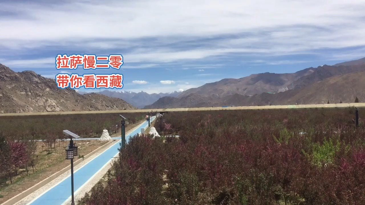 拉萨慢二零 带你看西藏! 等花海绽放,这里应该很美,不过今天也很棒~ #西藏旅行 #拉萨骑行 #拉萨租自行车