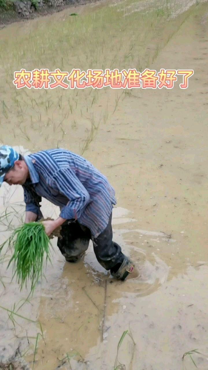 六一儿童节最好的玩法!带上小朋友去体验农耕文化!