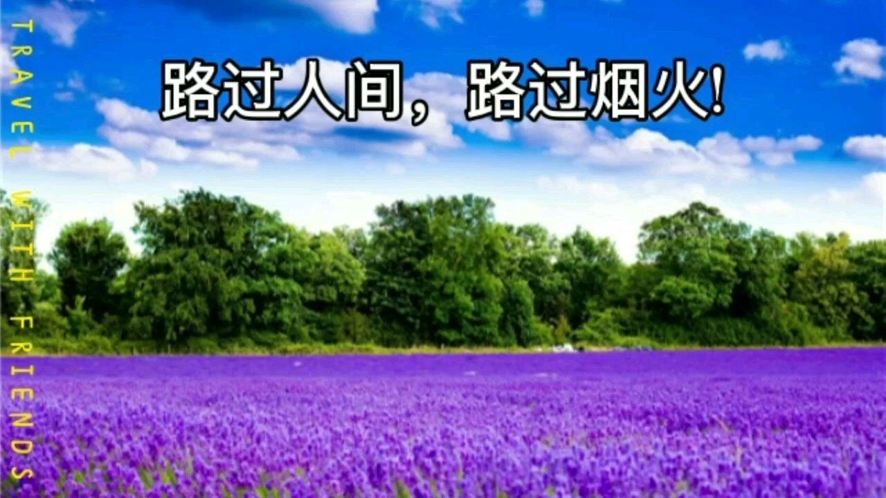 路过人间,路过烟火,这个周六,我们赏花去!  2021年5月8日(星期六 ):骑行呈贡赏花海,早8:30到9:00, 海埂大坝观景台,9:30点准时出发