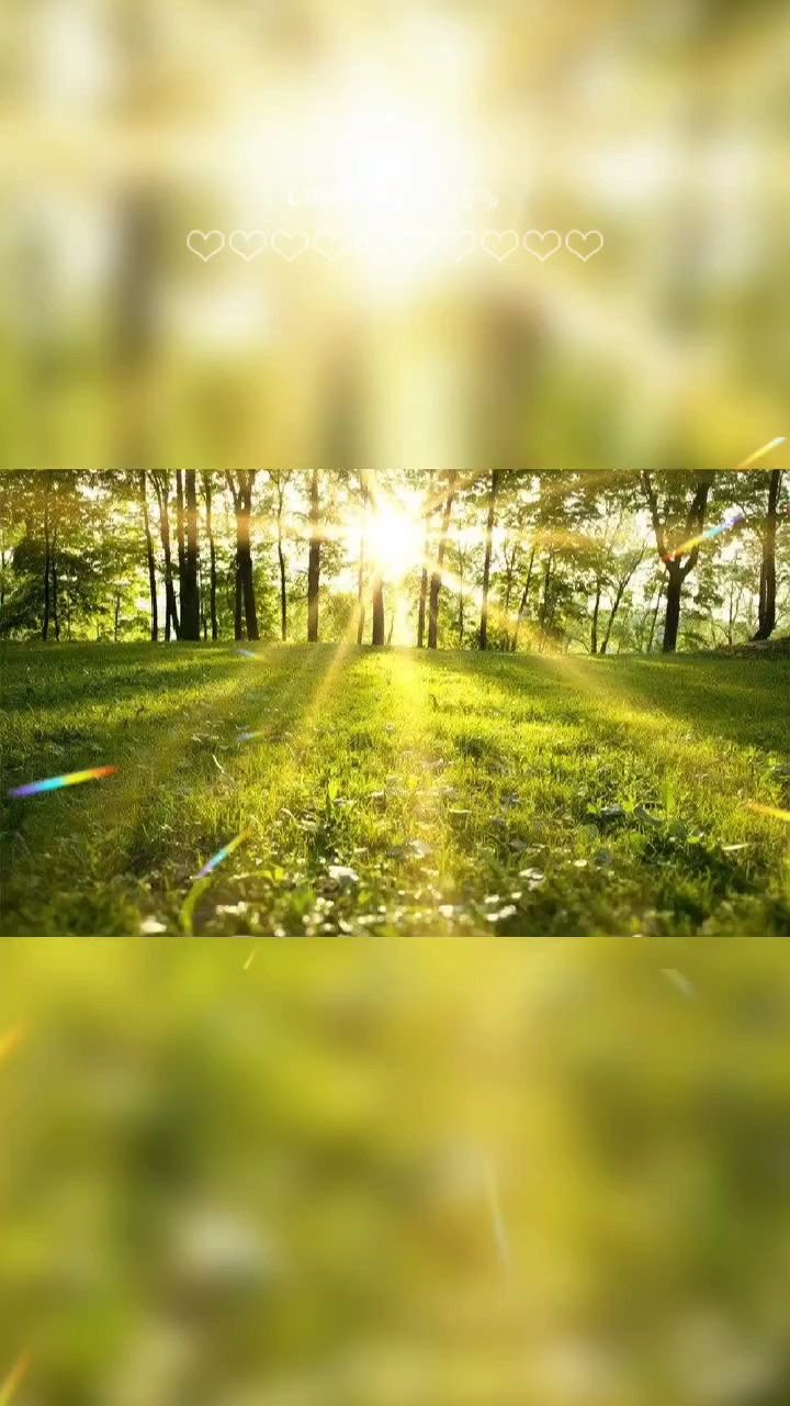 一天之计在于晨。我最开心的三件事:一陪父母、二陪孩子、三融入大自然……