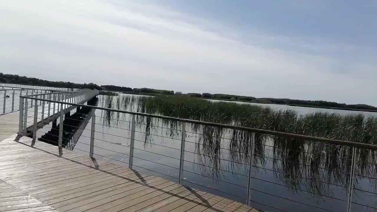 今日所到之处,湿地风景,一角……