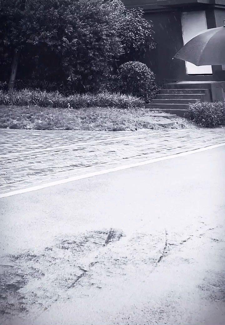 #我的七星推荐主播 #四月你好 #2021花房之夜 ? 爱情不伤人,伤的是永远实现不了的海誓山盟。失去不可怕,怕的是触景而伤情,睹物而思人....? #最撩人的情话 #又嗨又野在玩乐 #花椒好声音 #花椒星闻 #花椒好舞蹈 #颜即是正义 #搞笑是刚需 #新人报道请多关照 @花椒小助手 @花椒头条
