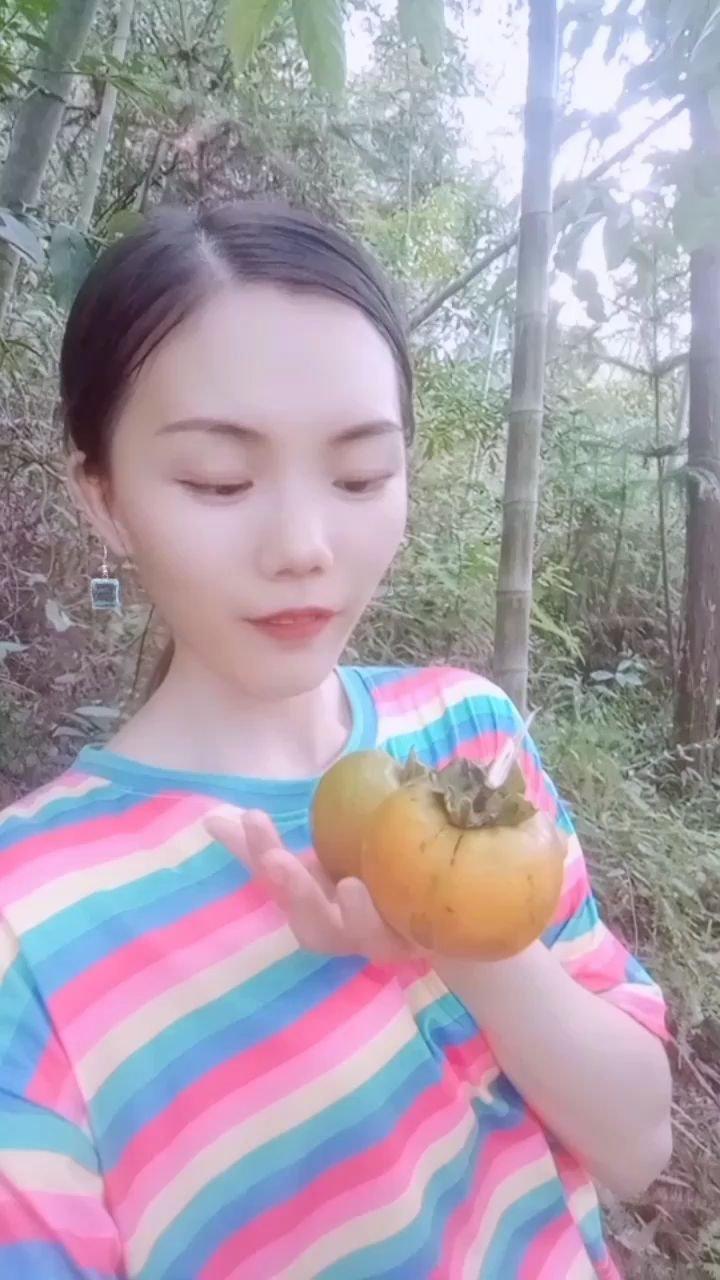 好漂亮的柿子,好開心山裡玩