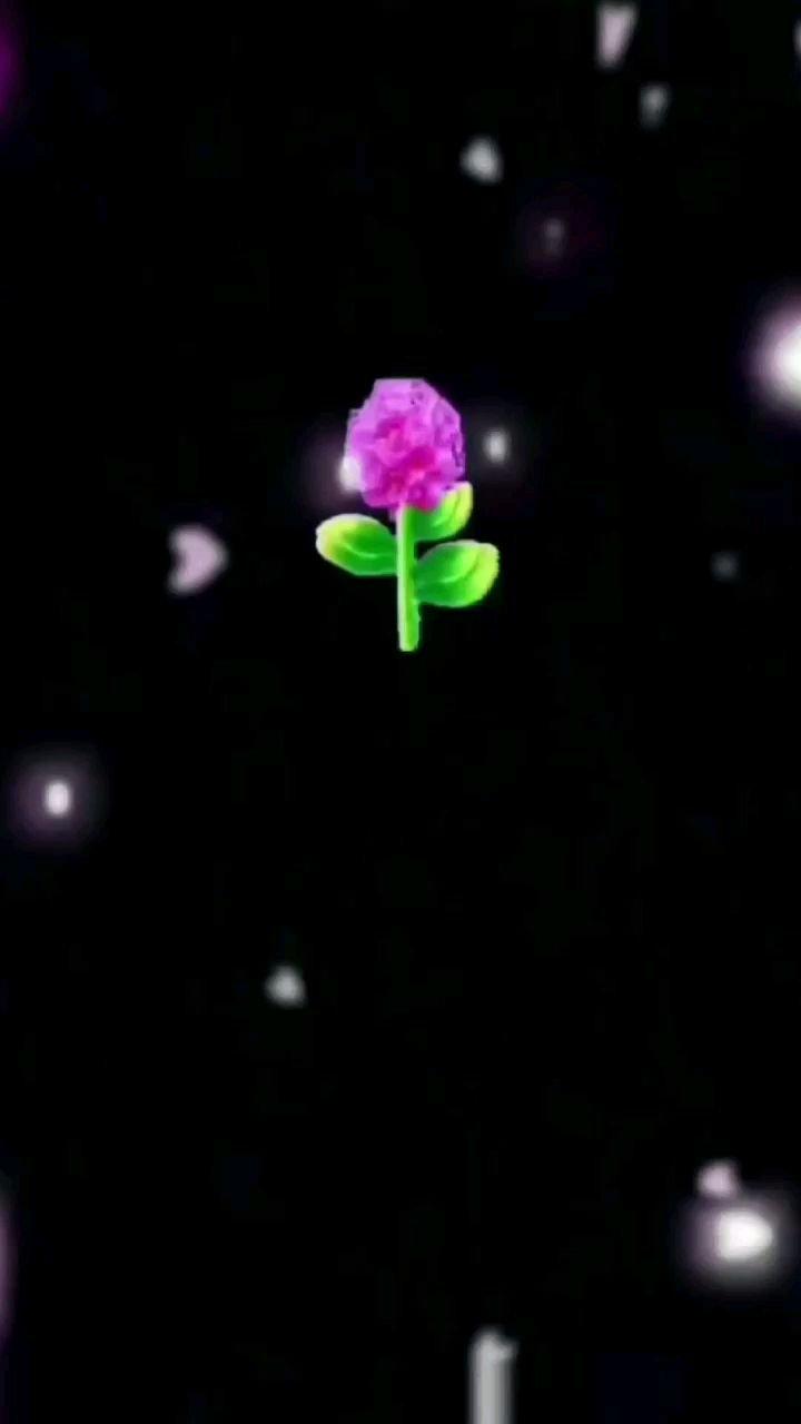 #520花式被爱