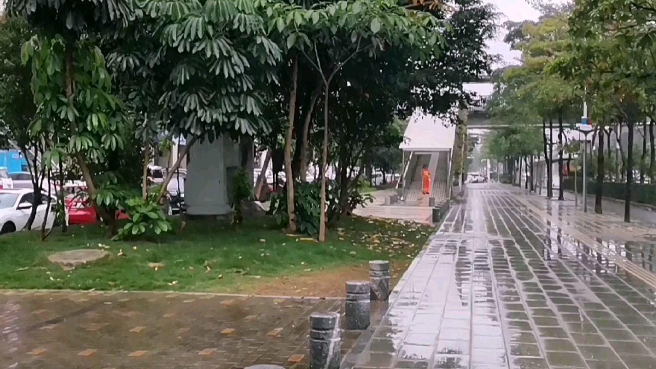 广东的雨季,很舒服,雨中漫步嘛???。???