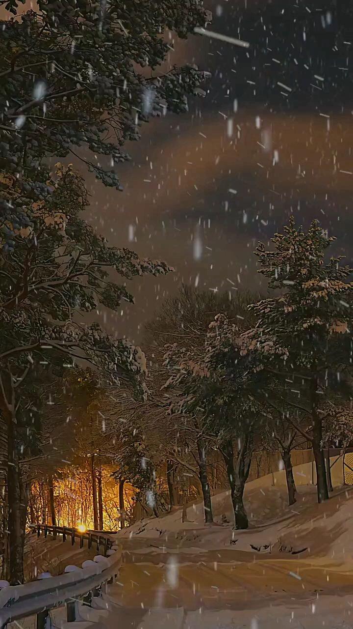 人生一梦,错错对对,恩恩怨怨,终不过日月无声,#治愈  #下雪#带上花椒去旅行 #花椒热点