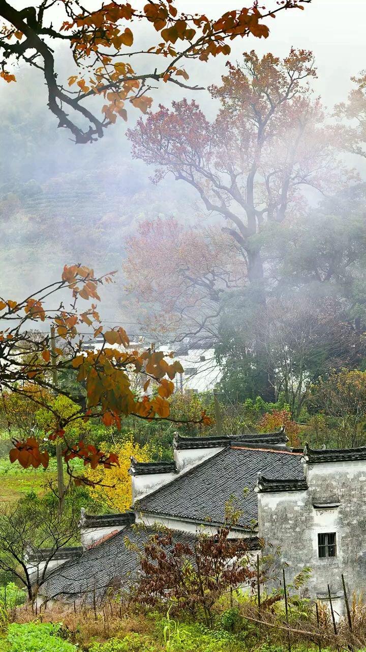 夏已尽,秋已至。一个转身,夏天成了故事,一次回眸,秋天成了风景,希望这个秋天的秋风不燥,岁月静好!!! #带上花椒去旅行 #八月你好
