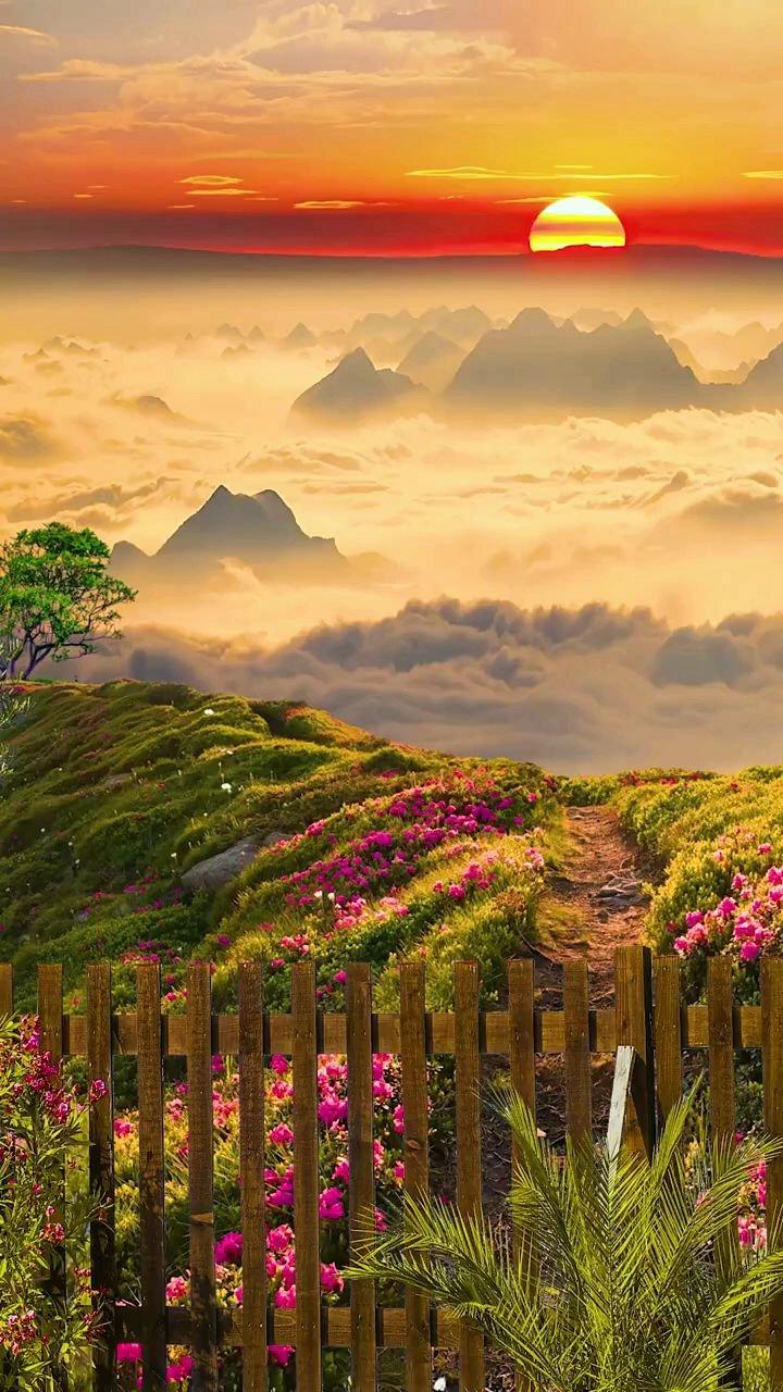 """很喜欢的一段话:""""宠辱不惊,看庭前花开花落;去留无意,望天上云卷云舒。"""" #带上花椒去旅行 #花椒热点"""