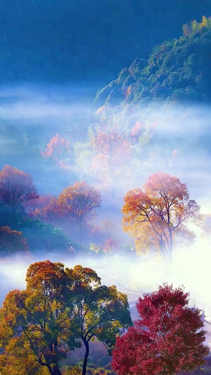 """我本无心恋红尘,奈何影子落人间;愿做凡尘一朵云,是聚是散随心缘!""""风景 """"人间风景美如画 """"#带上花椒去旅行"""