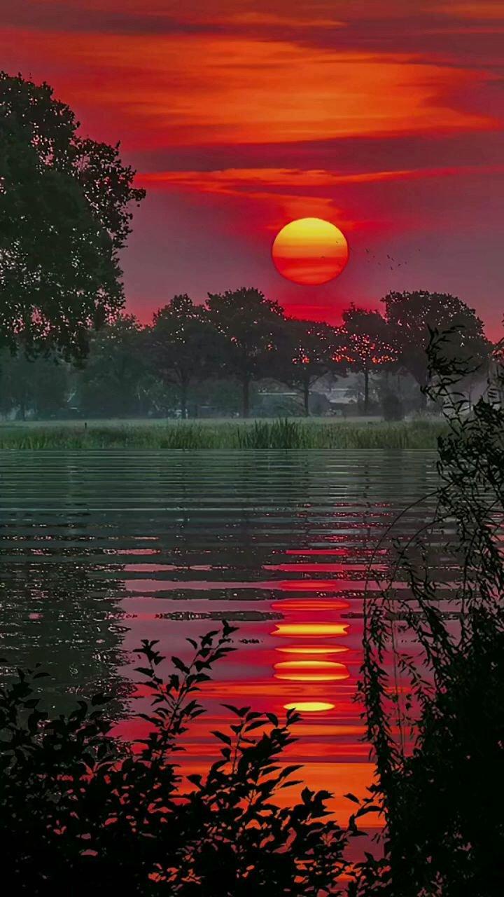 """一道斜阳铺水中,半江瑟瑟半江红,晚霞""""夕阳#带上花椒去旅行"""