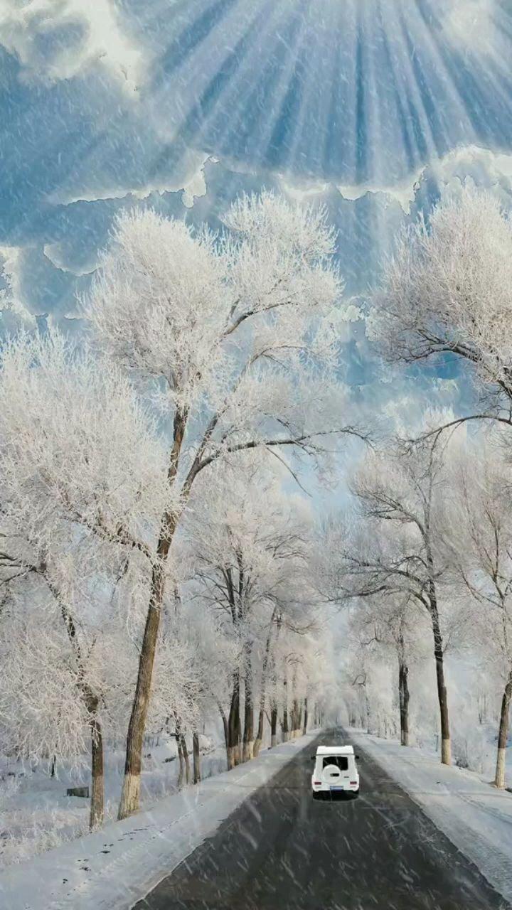 如果一直在雪中走下去,会不会走到白头呢#风景 #雪 #带上花椒去旅行