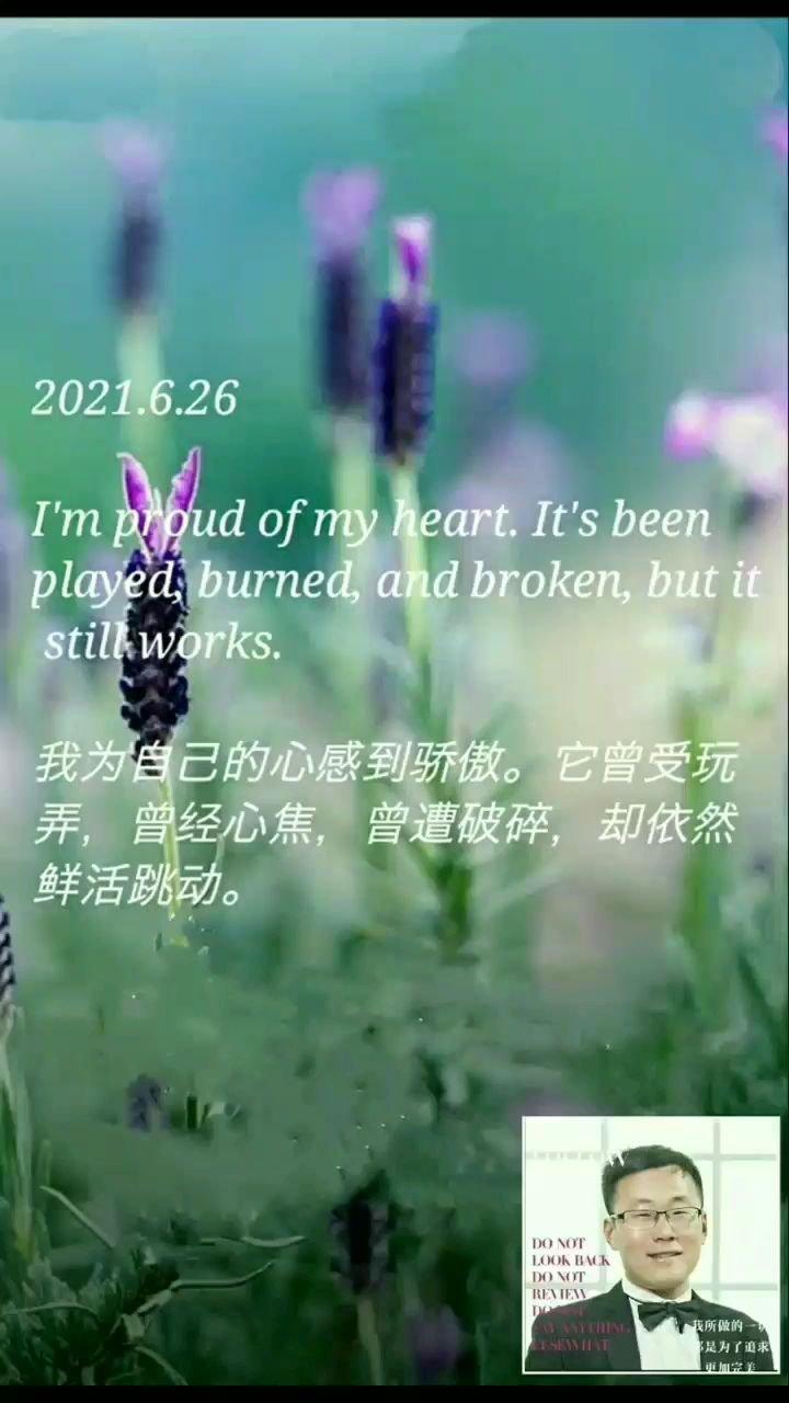 我为自己的心感到骄傲。它曾受玩弄,曾经心焦,曾遭破碎,却依然鲜活跳动。