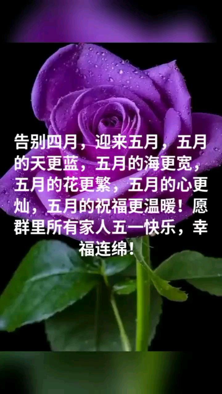 告别四月,迎来五月,五月的天更蓝,五月的海更宽,五月的花更繁,五月的心更灿,五月的祝福更温暖!愿群里所有家人五一快乐,幸福连绵!