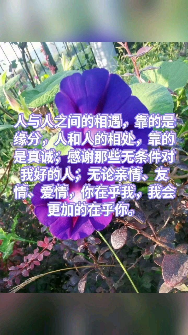 人与人之间的相遇,靠的是缘分,人和人的相处,靠的是真诚;感谢那些无条件对我好的人;无论亲情、友情、爱情,你在乎我,我会更加的在乎你。