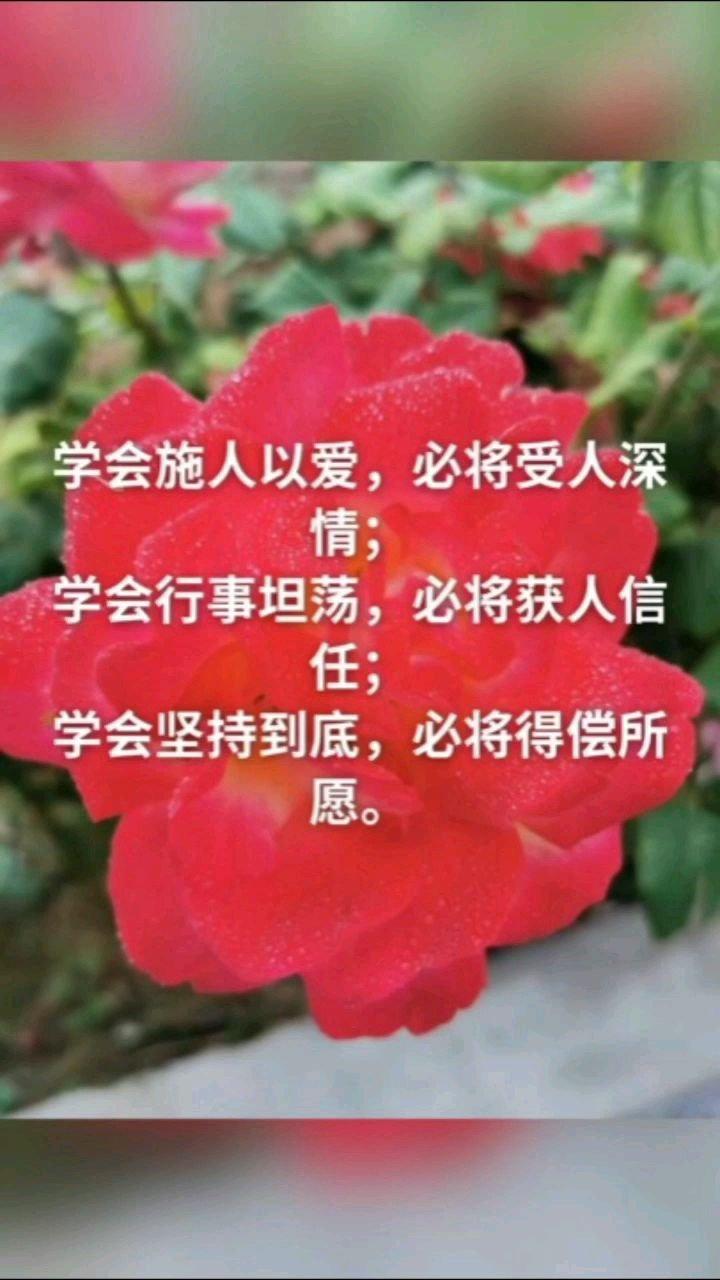 学会施人以爱,必将受人深情; 学会行事坦荡,必将获人信任; 学会坚持到底,必将得偿所愿。