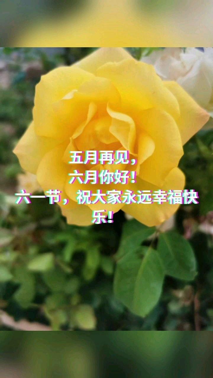 五月再见, 六月你好! 六一节,祝大家永远幸福快乐!