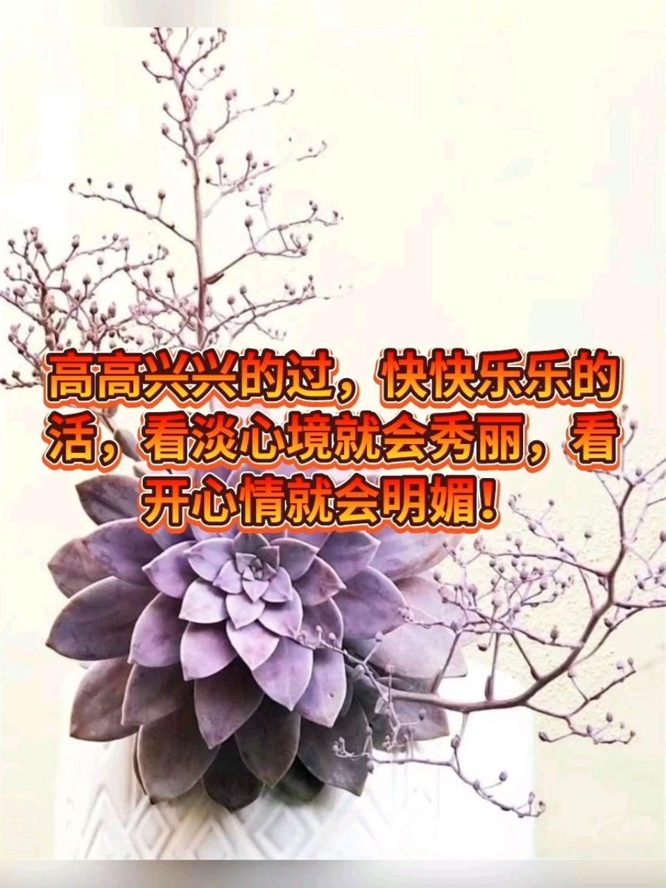 高高兴兴的过,快快乐乐的活,看淡心境就会秀丽,看开心情就会明媚!