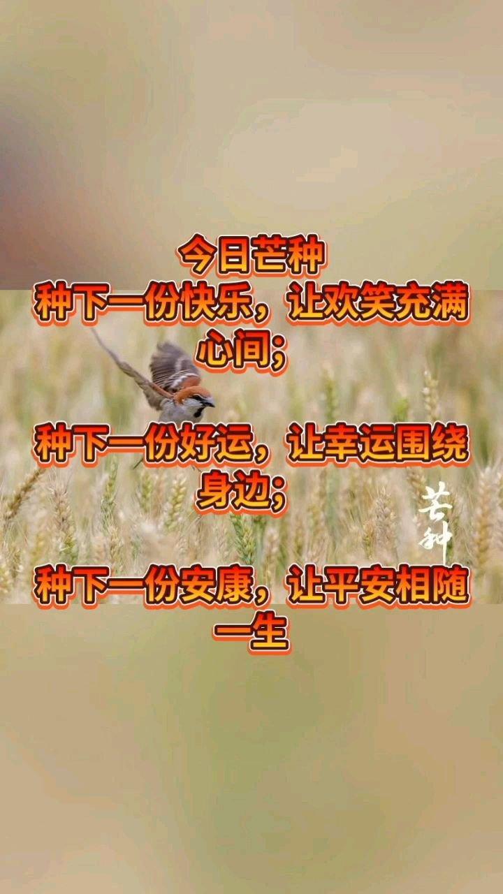 今日芒种 种下一份快乐,让欢笑充满心间;  种下一份好运,让幸运围绕身边;  种下一份安康,让平安相随一生