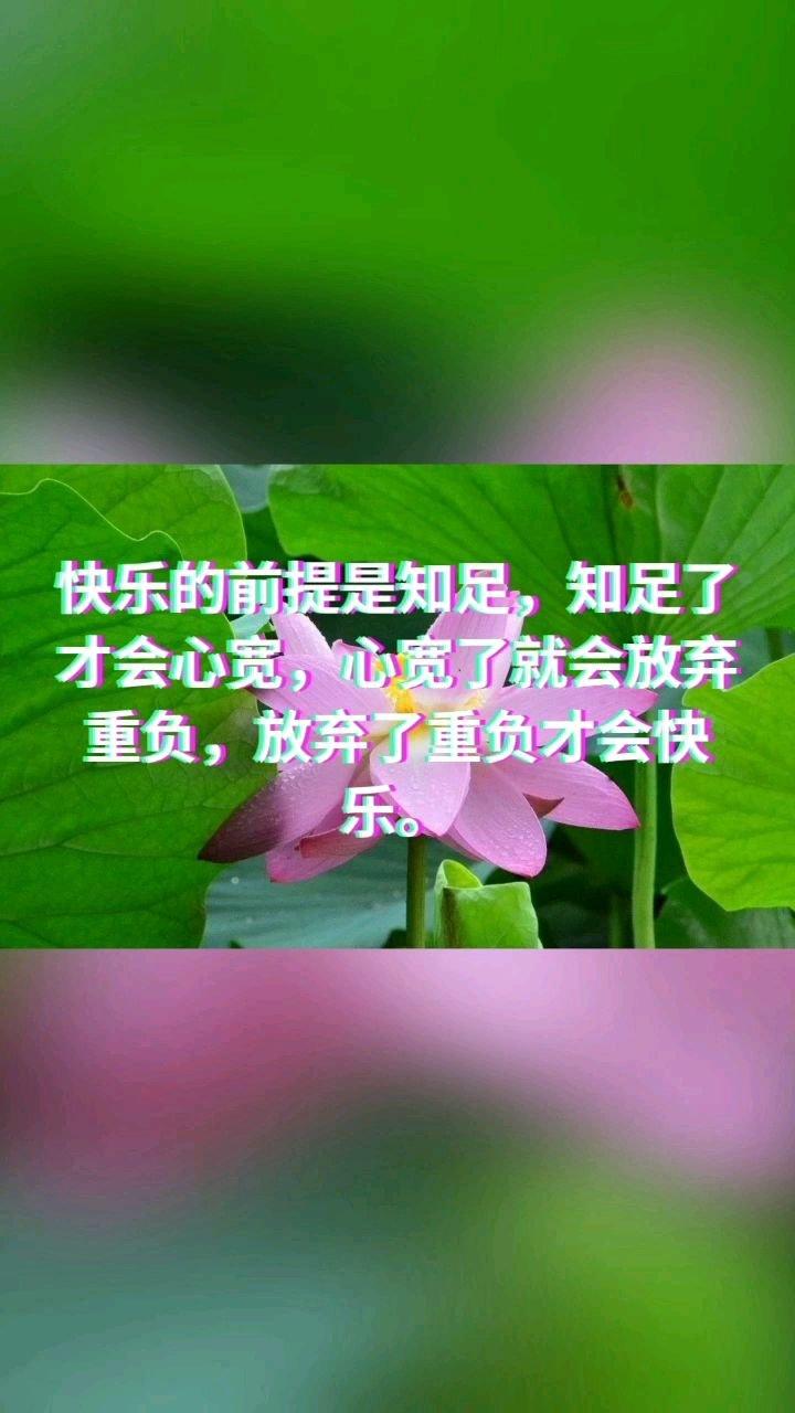快乐的前提是知足,知足了才会心宽,心宽了就会放弃重负,放弃了重负才会快乐。