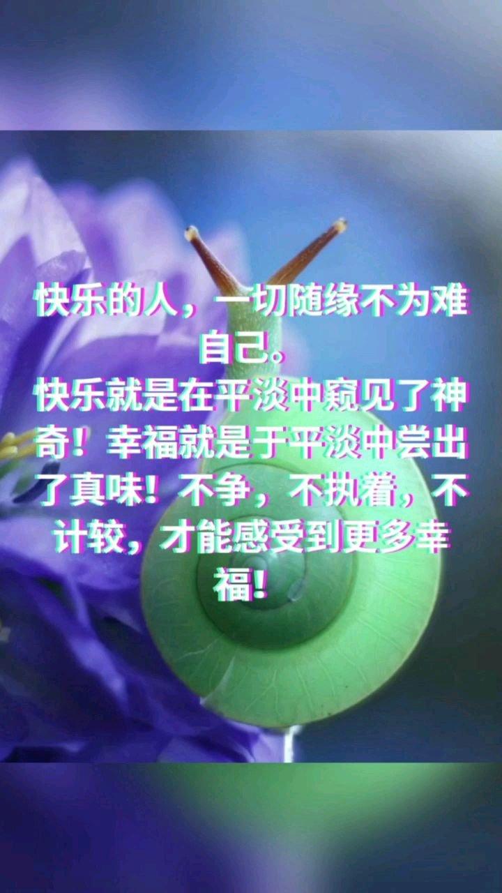 快乐的人,一切随缘不为难自己。 快乐就是在平淡中窥见了神奇!幸福就是于平淡中尝出了真味!不争,不执着,不计较,才能感受到更多幸福!