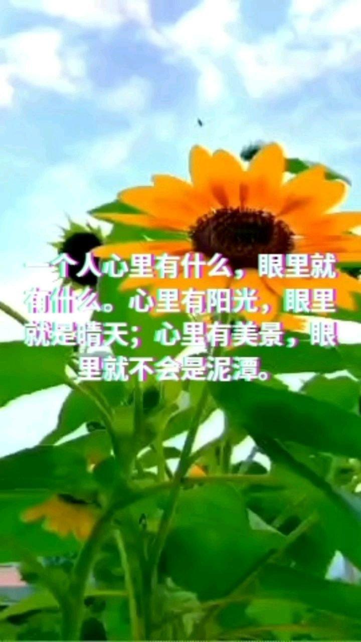 一个人心里有什么,眼里就有什么。心里有阳光,眼里就是晴天;心里有美景,眼里就不会是泥潭。