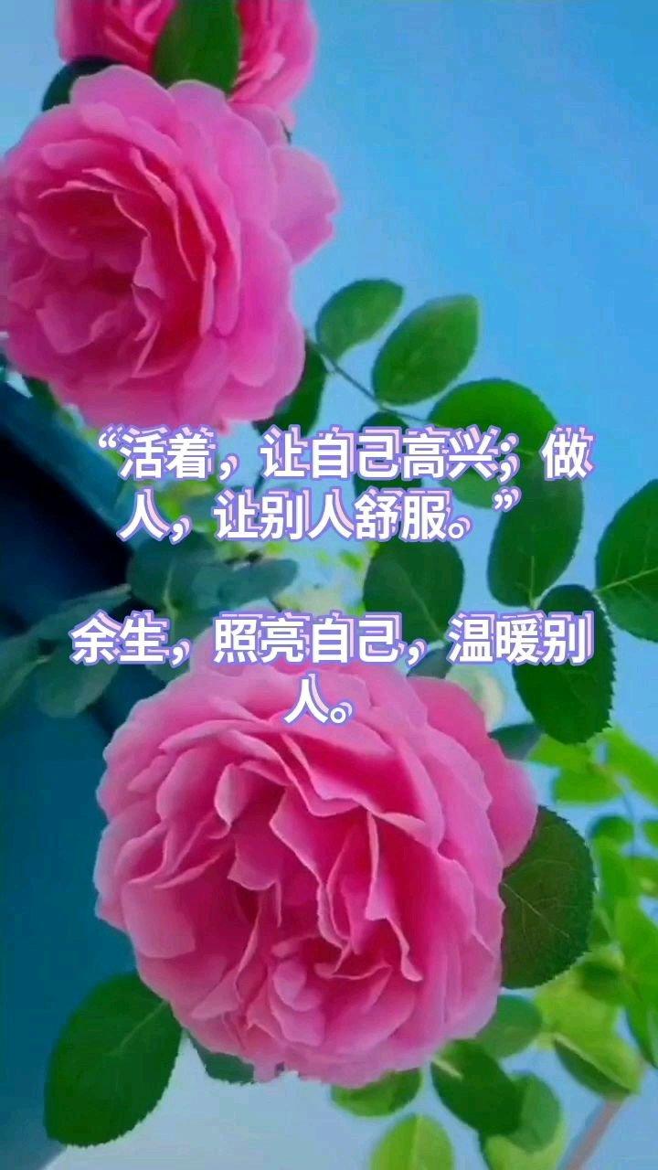 """""""活着,让自己高兴;做人,让别人舒服。""""  余生,照亮自己,温暖别人。"""