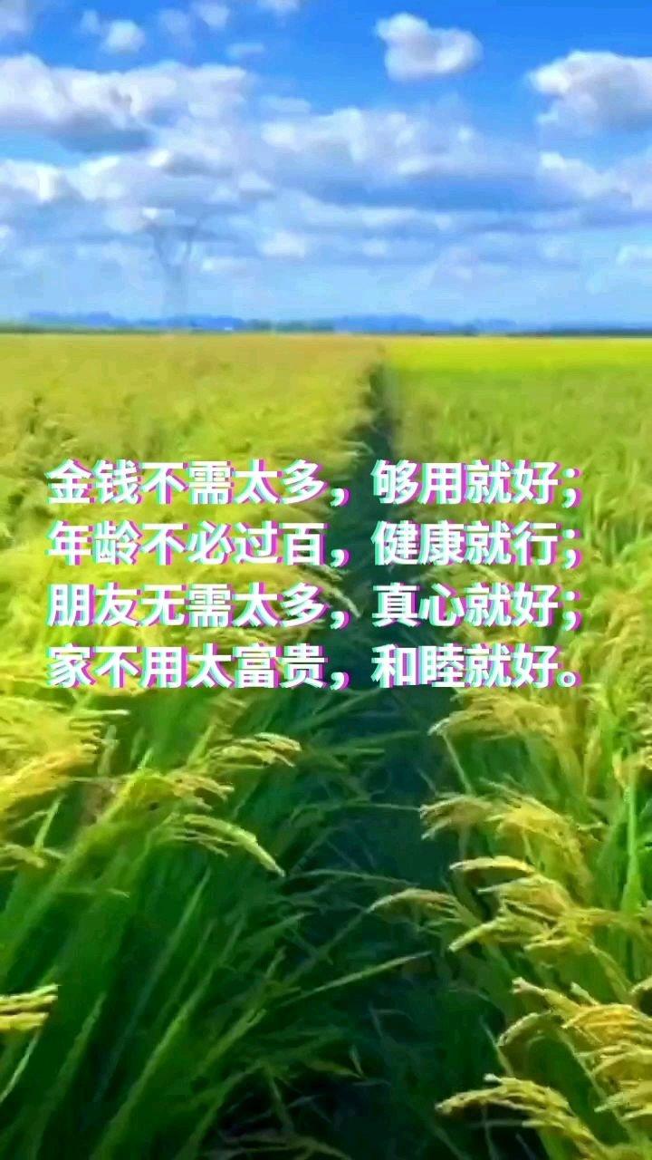 金钱不需太多,够用就好;年龄不必过百,健康就行;朋友无需太多,真心就好;家不用太富贵,和睦就好。