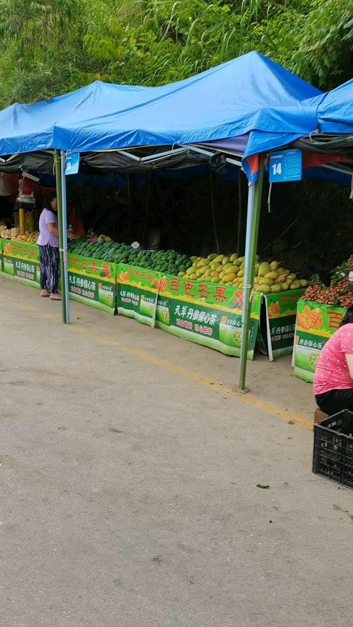 好多好多芒果啊#带上花椒去旅行