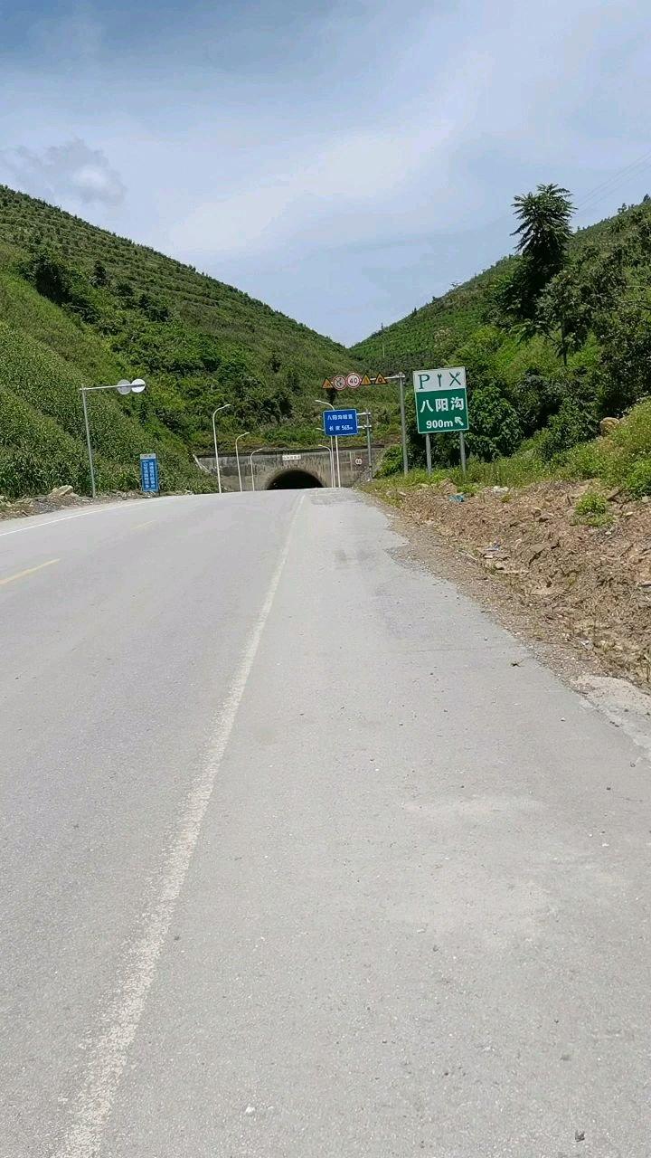 今年骑行第二个隧道 八阳沟隧【嘀~】度565米#带上花椒去旅行