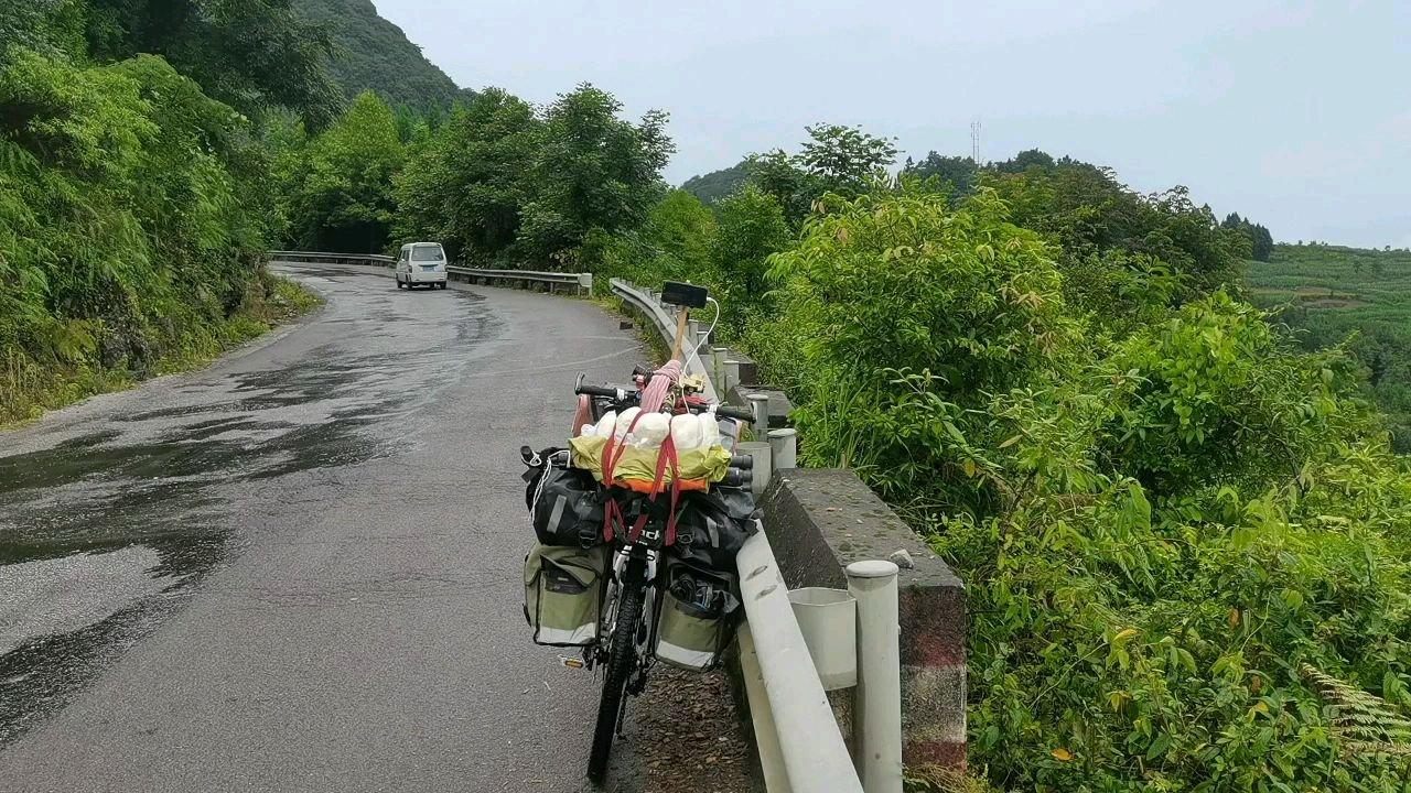 雨后的大山美的很#带上花椒去旅行