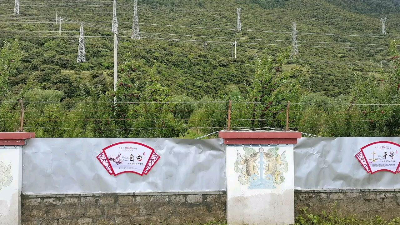骑行中国 六进西藏之林芝 高原黑钻苹果#带上花椒去旅行 #带上花椒去旅行 #百年奋进京彩启航 #九月你好