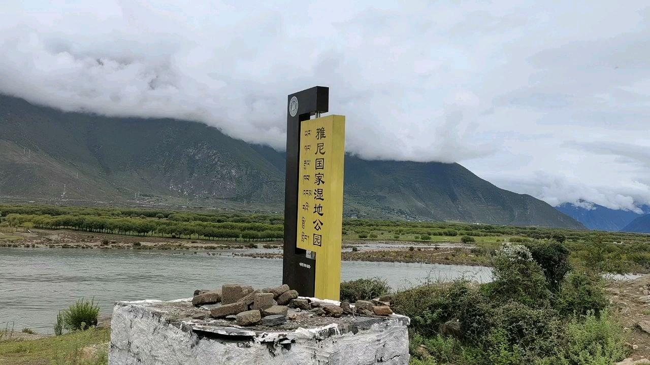 骑行中国 六进西藏之林芝 雅鲁藏布江与尼洋河交汇处#九月你好 #带上花椒去旅行 #百年征程