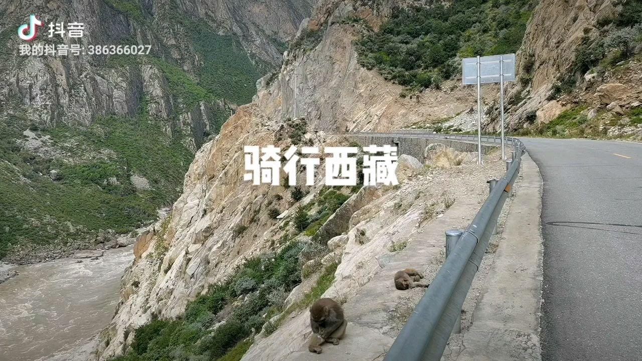骑行中国 六进西藏之山南 骚动的猴哥#花椒中秋月满愿成 #又嗨又野在玩乐 #带上花椒去旅行