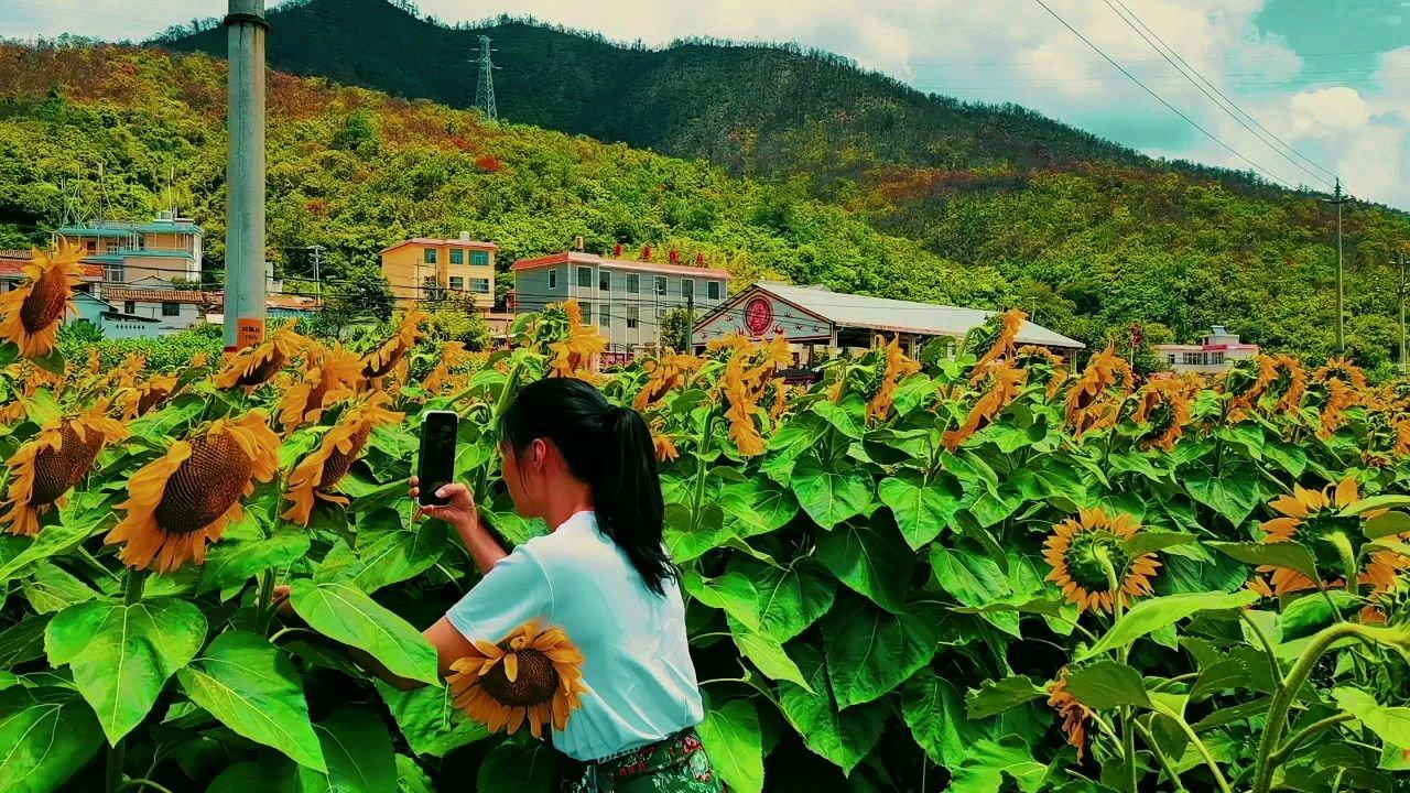 心存热爱 何必远方#带上花椒游祖国 #十月你好 #带上花椒去旅行